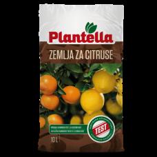 PLANTELLA zemlja za citruse