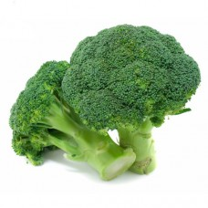 Brokoli CORVET